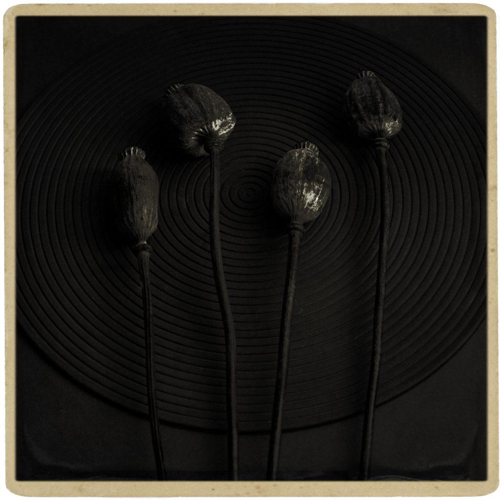 Dark Pods