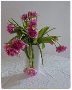 Flores Ephemeri 18025