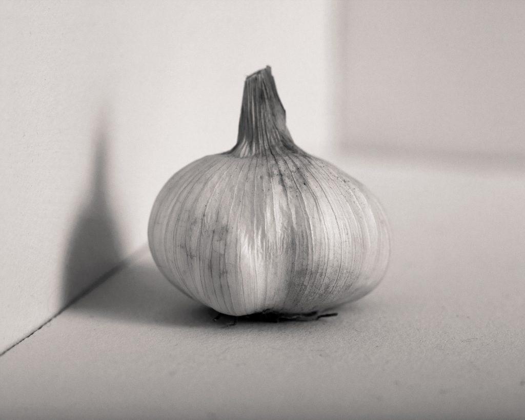 Garlic Skin
